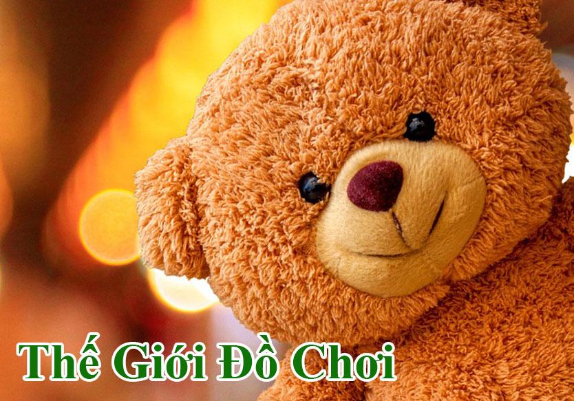 the-gioi-do-choi